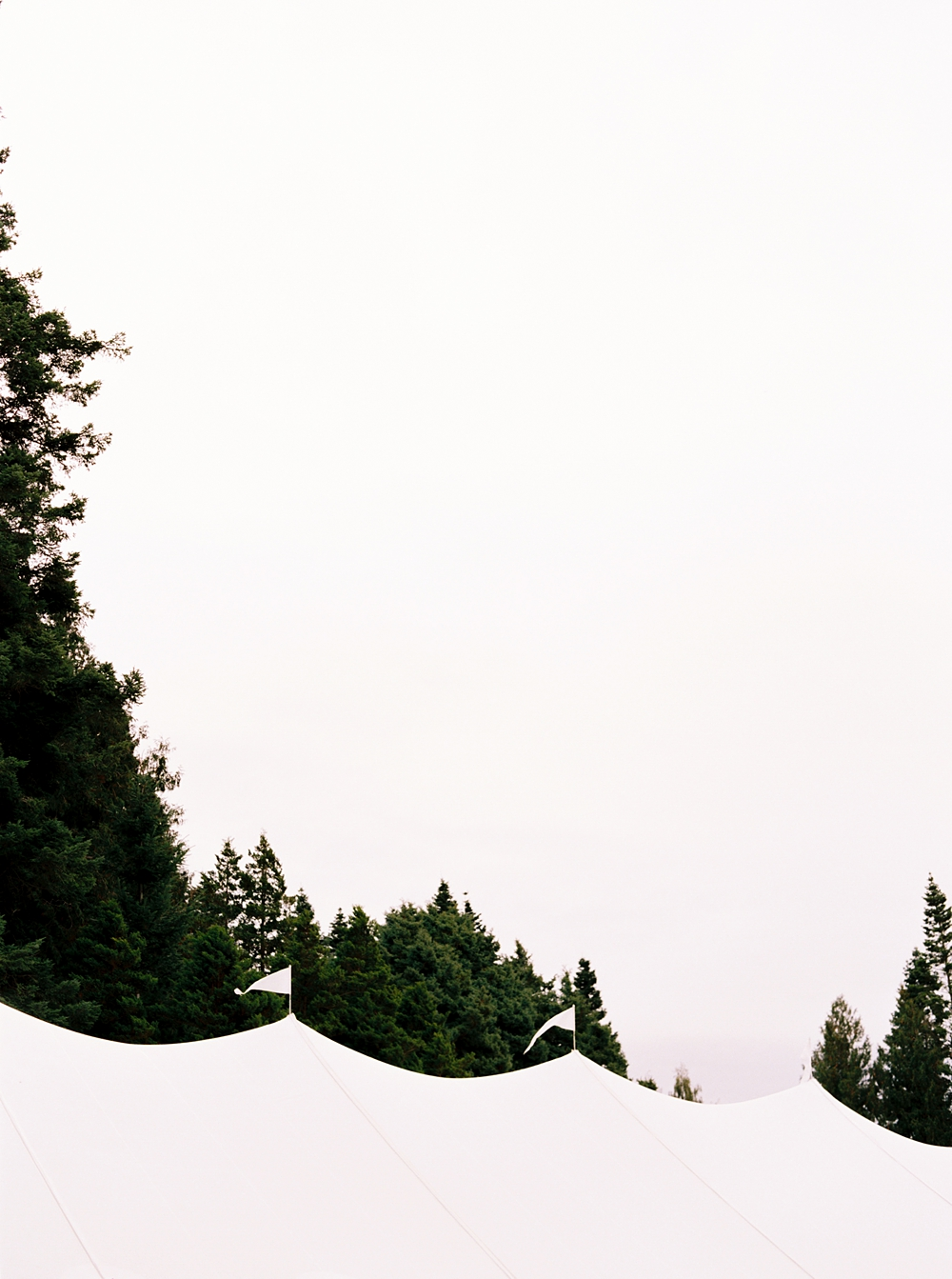 Top of the sailcloth tent with evergreen trees in the backgroun